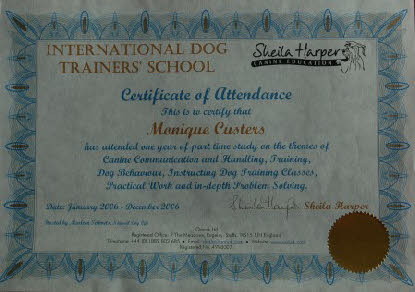 Certificate IDTS